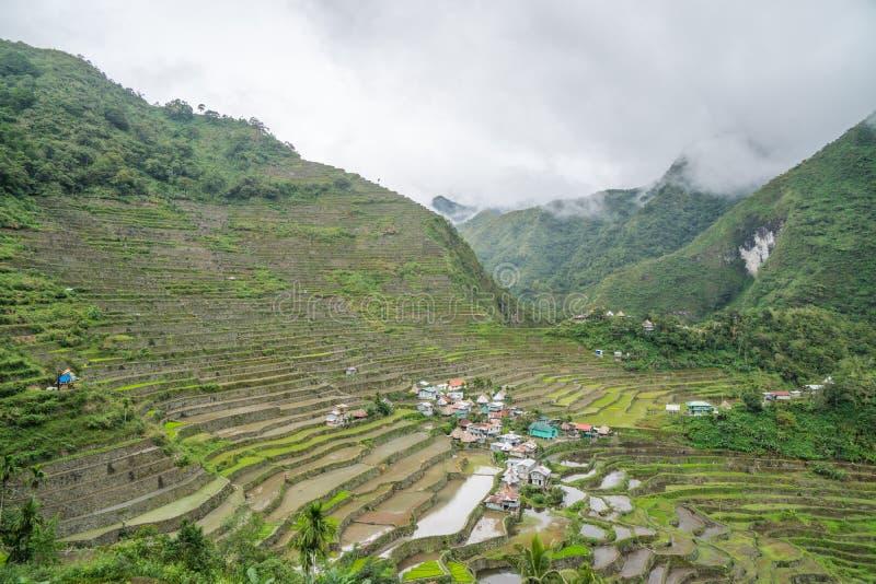 Terraços do arroz de Batad foto de stock royalty free