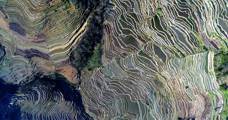 Terraços do arroz de Hani fotos de stock