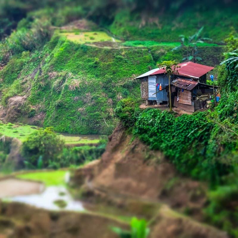 Terraços do arroz e casas da vila Banaue, Filipinas Shif da inclinação fotos de stock royalty free