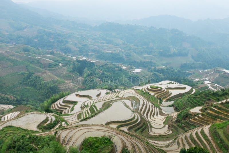 Terraços do arroz em Longsheng, China foto de stock royalty free