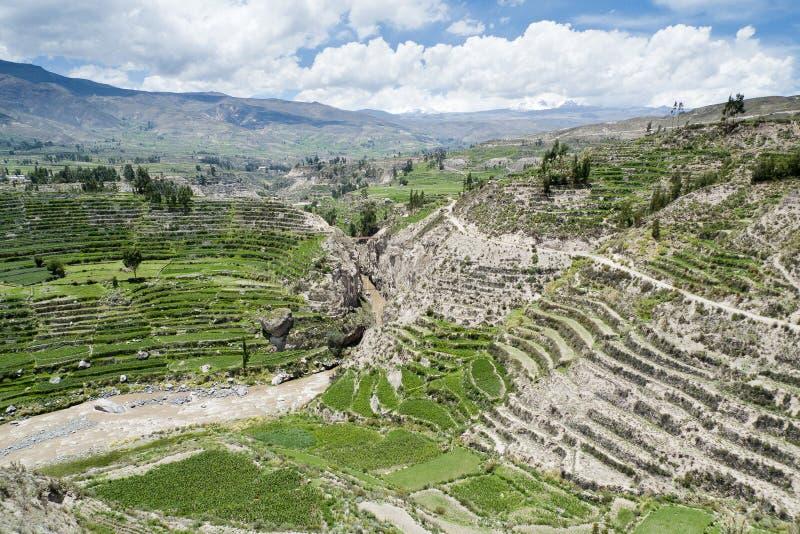 Terraços do Inca imagens de stock