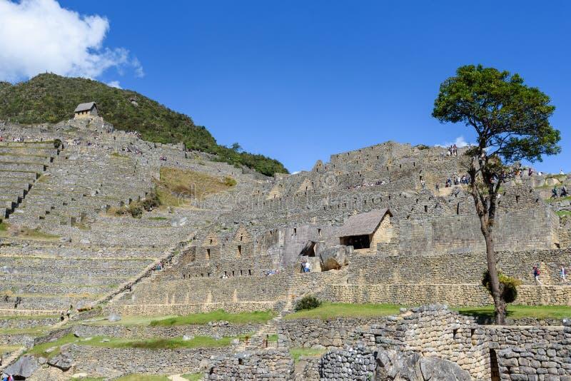 Terraços e construções agrícolas Machu Picchu foto de stock royalty free