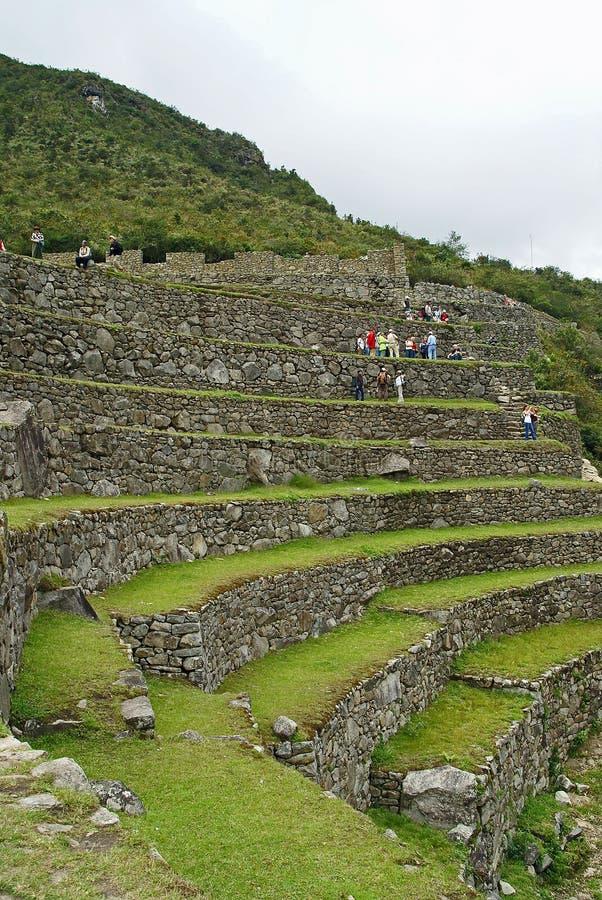Terraços em Machu Picchu, Peru fotografia de stock royalty free