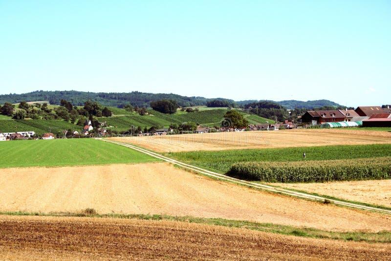 Terra agrícola fotos de stock