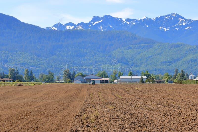 Terra agrícola de lavra a ventilar foto de stock royalty free