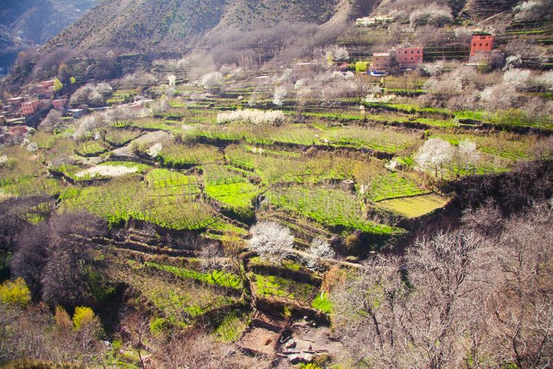 Terra agrícola nas montanhas de atlas de Marrocos fotografia de stock