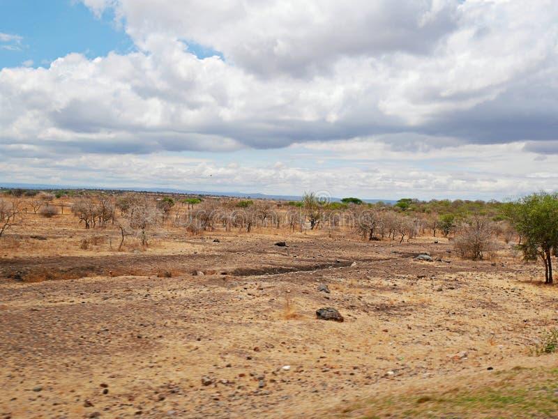 Terra amarela em África fotografia de stock
