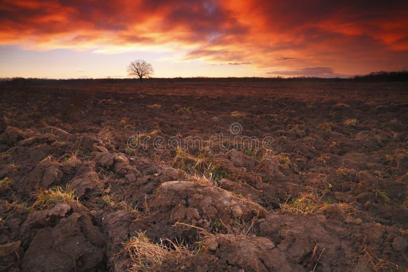 Terra arável fotos de stock