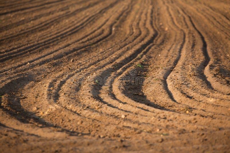 Terra arata, il terreno fotografia stock libera da diritti