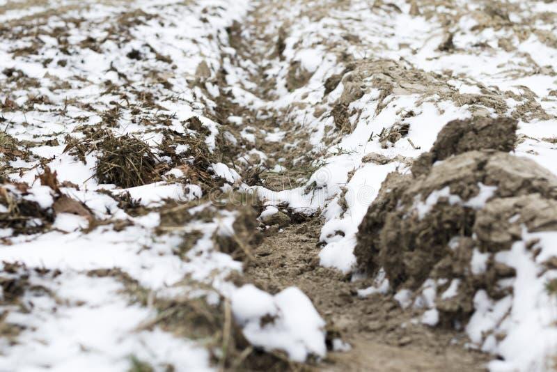 Terra arata nell'inverno con i solchi profondi spruzzati con neve immagine stock