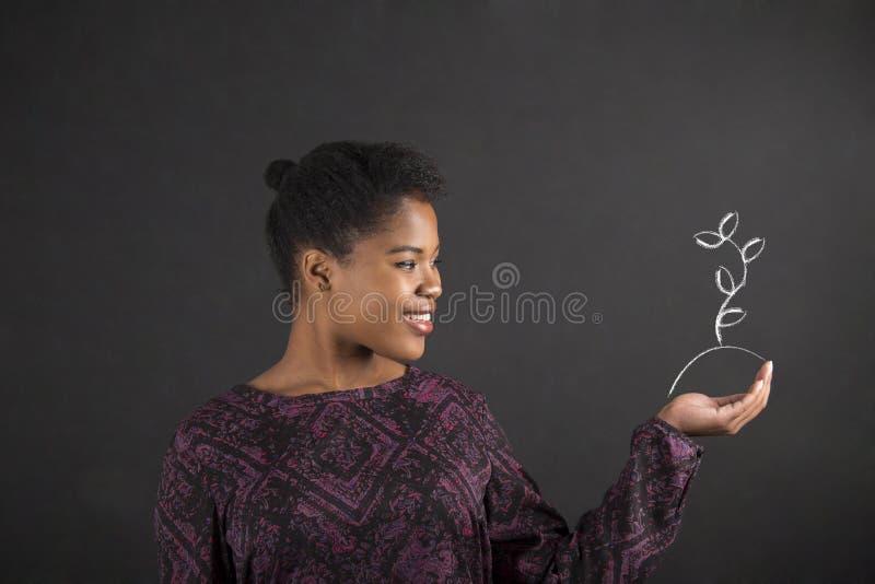 A terra arrendada africana da mulher distribui com a planta crescente no fundo do quadro-negro imagem de stock