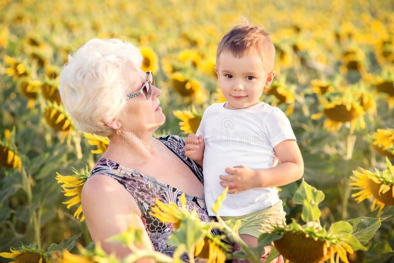 Terra arrendada da avó na posição do neto da criança dos braços no campo dos girassóis na noite do verão Vida r?stica imagens de stock royalty free