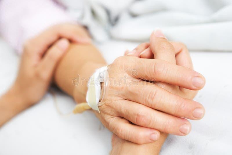 Terra arrendada da filha sua mão da matriz no hospital fotografia de stock