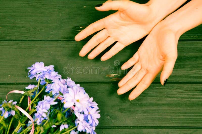 A terra arrendada da menina cede o fundo com flores azuis imagens de stock