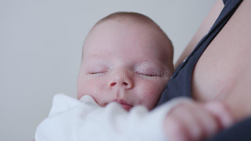 Terra arrendada nova da matriz seu bebê foto de stock
