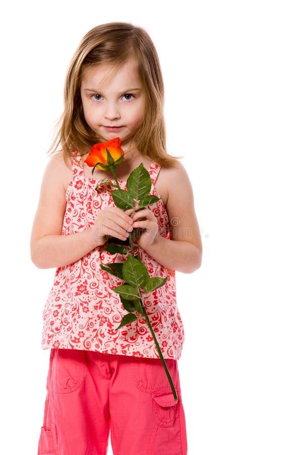 Terra arrendada Rosa da menina foto de stock royalty free