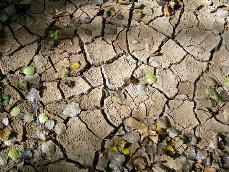 Terra asciutta in autunno immagine stock libera da diritti