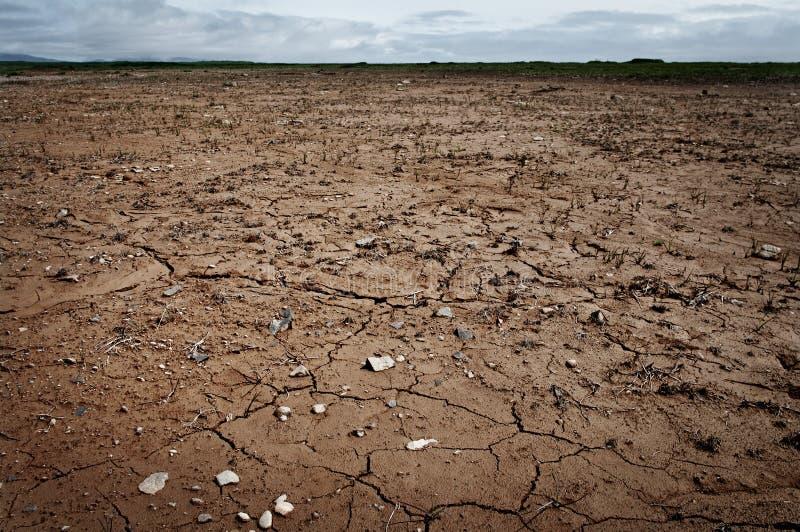 Terra asciutta e incrinata. immagine stock
