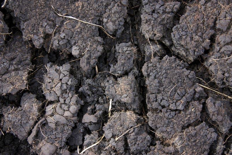 Terra bruciata fotografia stock libera da diritti