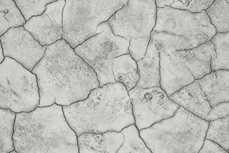 Terra cinzenta seca com quebras foto de stock