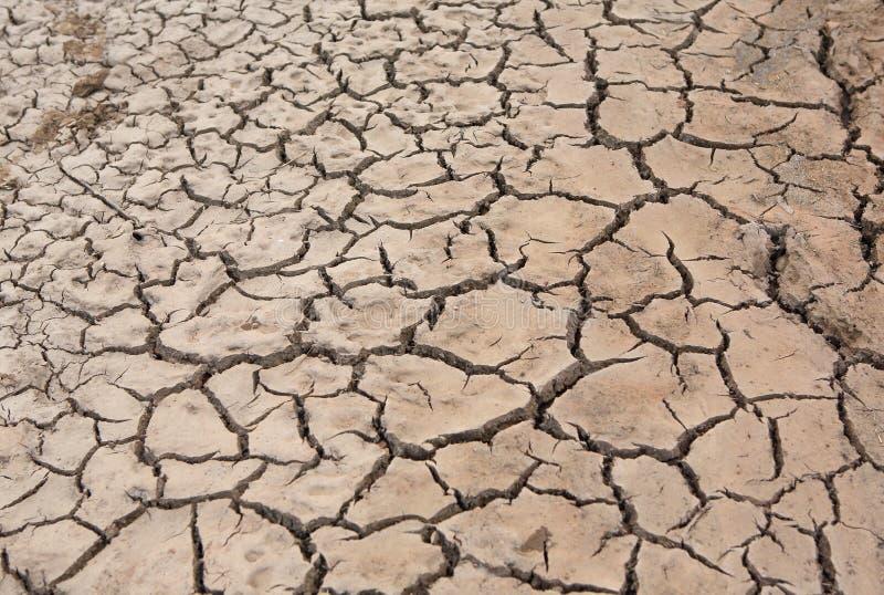 Terra da quebra e solo seco imagem de stock royalty free