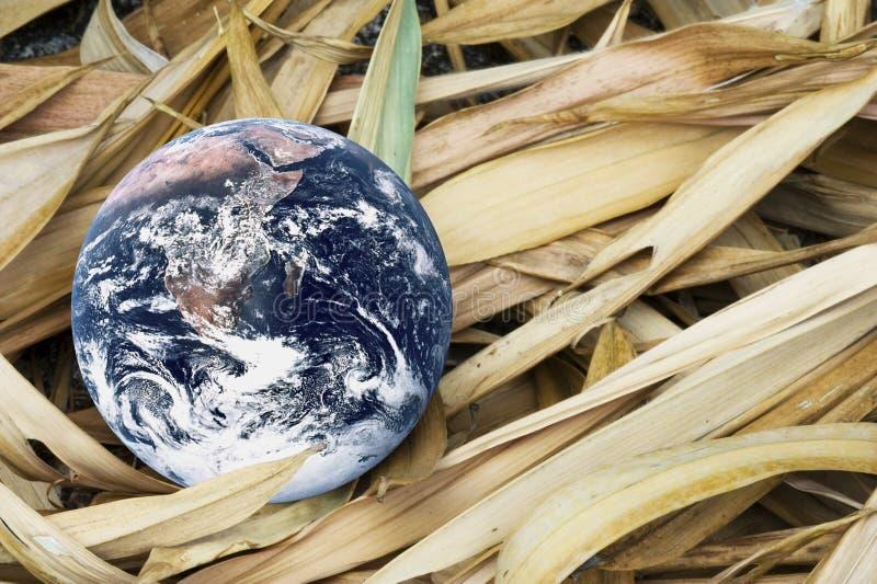 Terra de morte do planeta imagem de stock royalty free