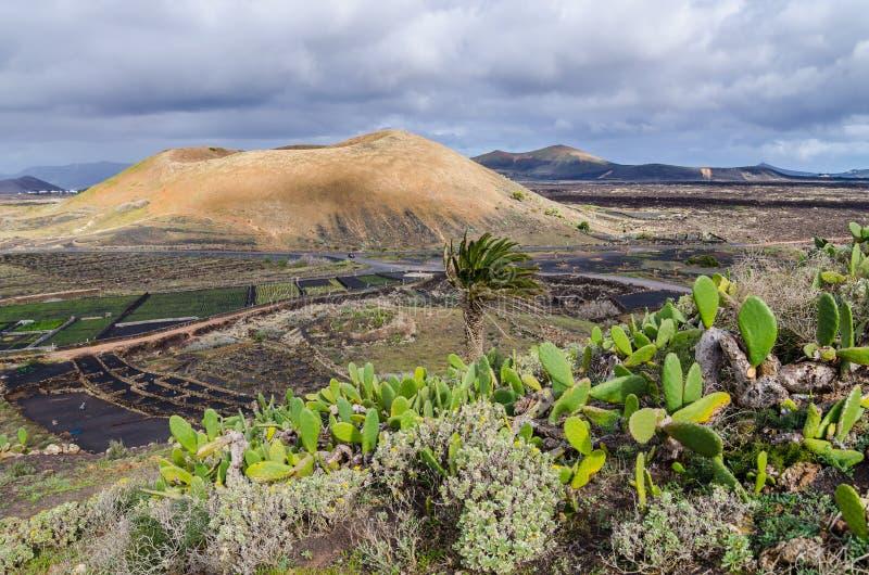 Terra dei vulcani immagini stock