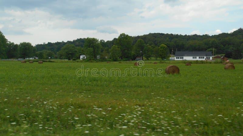 Terra dell'azienda agricola nell'Ohio immagine stock libera da diritti