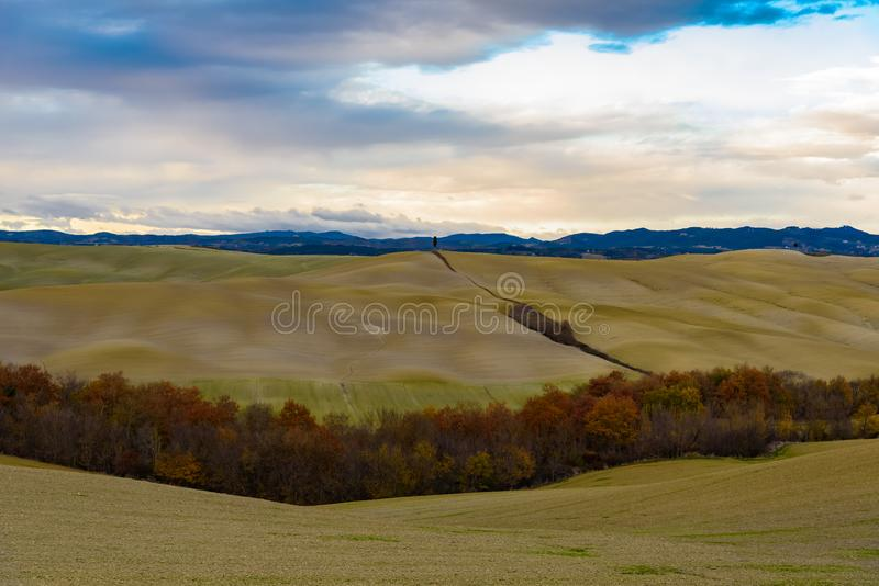 Terra della Toscana in autunno fotografie stock libere da diritti
