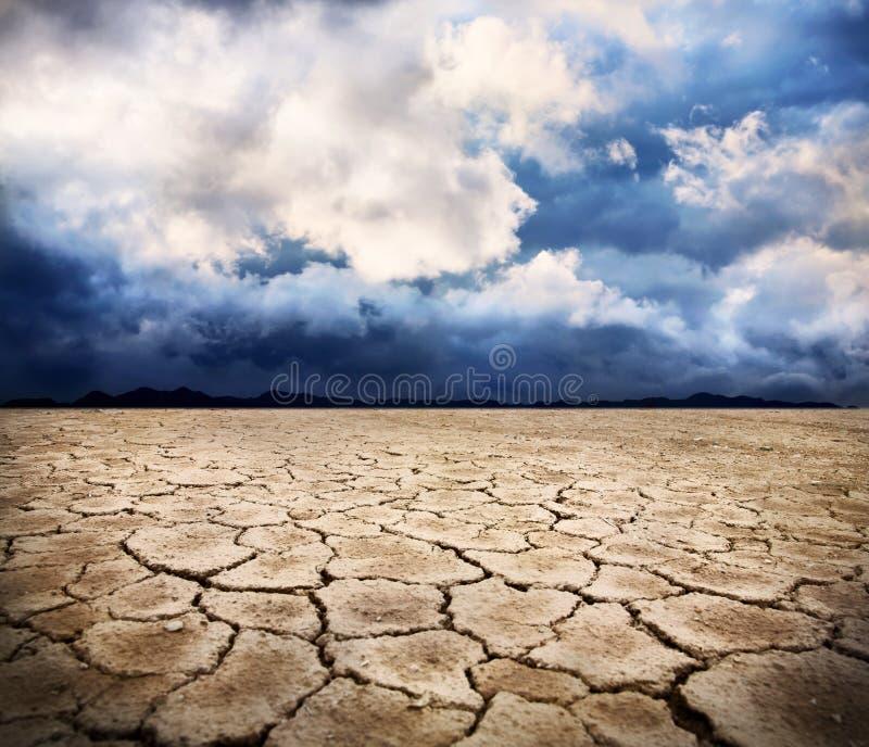 Terra di siccità fotografia stock