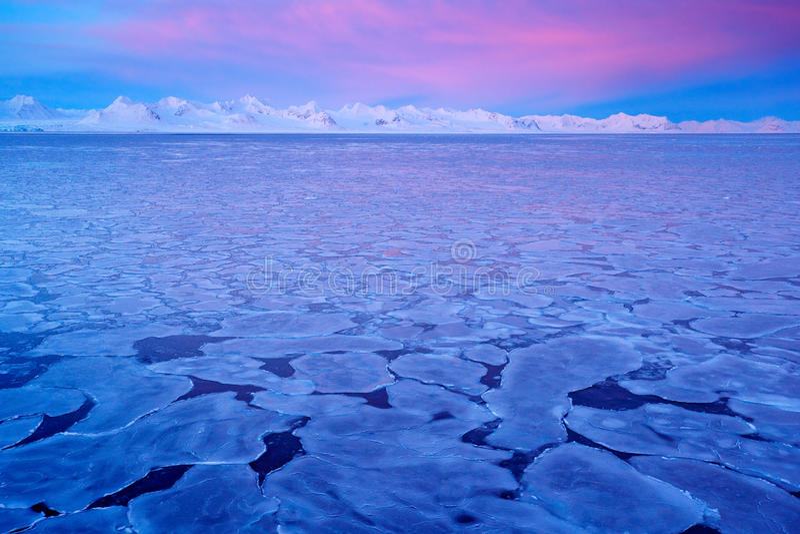 Terra do gelo Ártico do inverno Montanha nevado branca, geleira azul Svalbard, Noruega Gelo no oceano Crepúsculo do iceberg no Po fotografia de stock royalty free