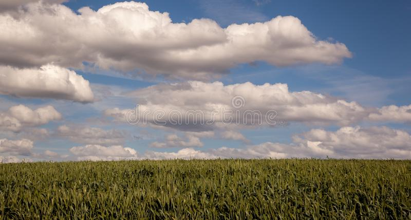 Terra e cielo immagine stock