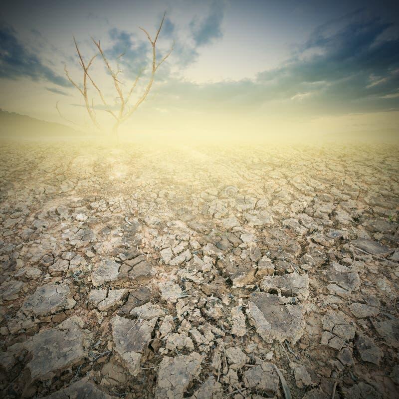 Terra e terra incrinata con il cielo drammatico sopra terra incrinata fotografia stock