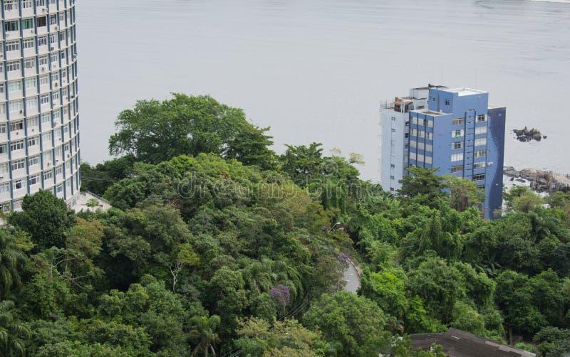 terra ed albero sulla costa nello stato di Sao Paulo Brasile immagini stock libere da diritti
