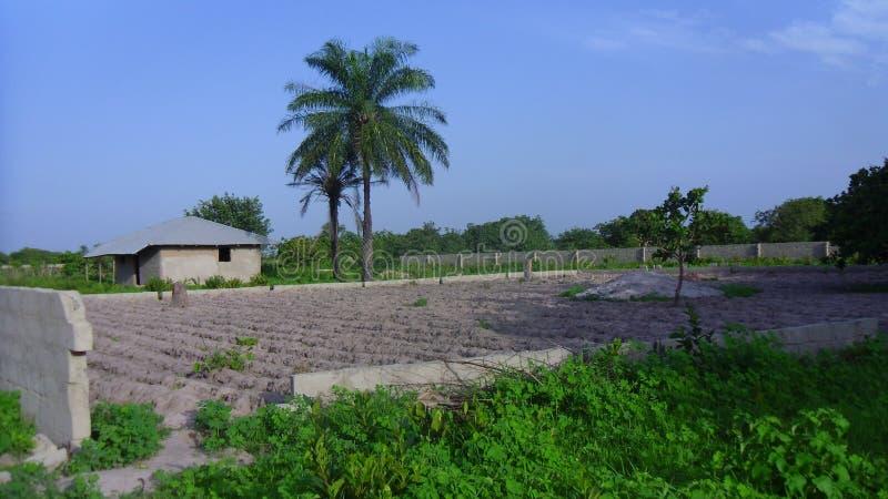 Terra em África fotografia de stock