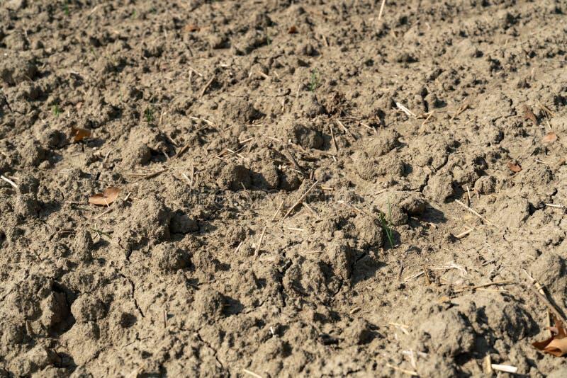 Terra estéril e da seca fotos de stock