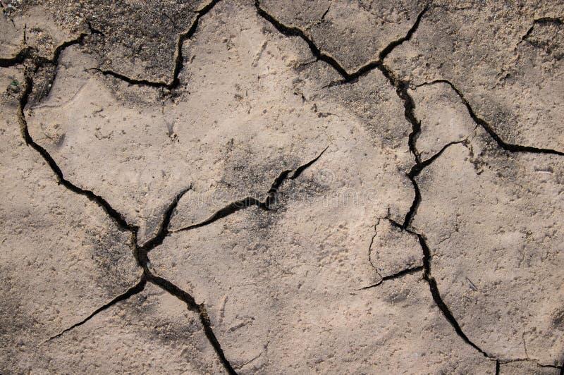 A terra fangoso rotto denota drought1 fotografia stock