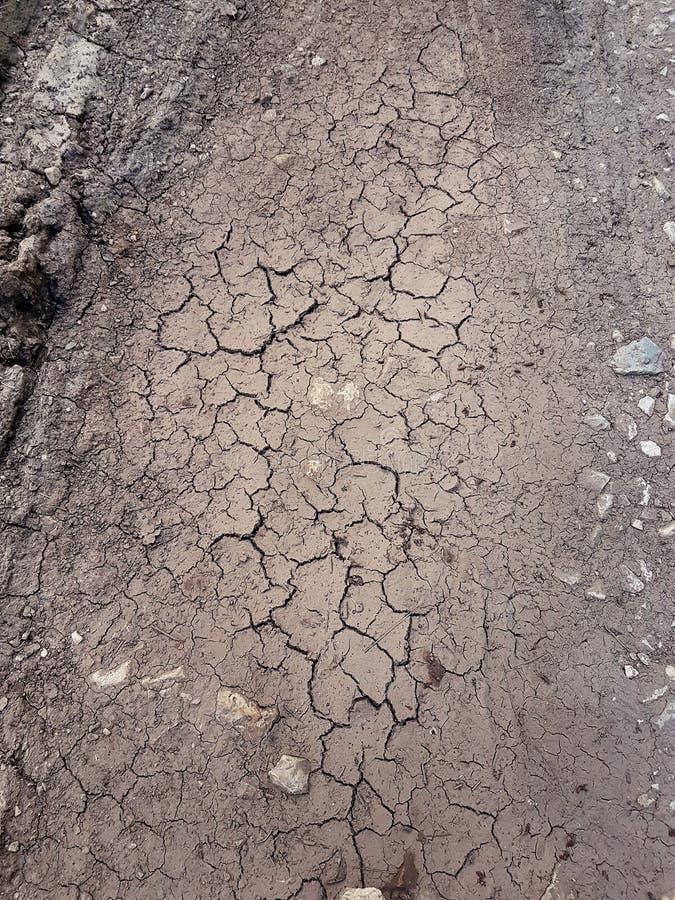 Terra incrinata, percorso, suolo asciutto Concetto di ecologia Struttura incrinata e fondo della terra Campo asciutto, acqua, ter immagini stock