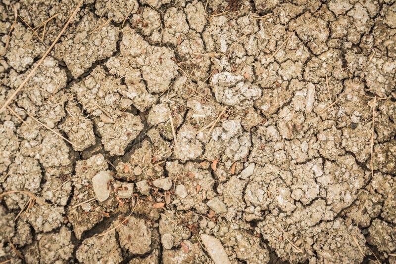 Terra incrinata, terra asciutta Fondo al suolo incrinato, terra incrinata asciutta che riempie la struttura come fondo immagini stock