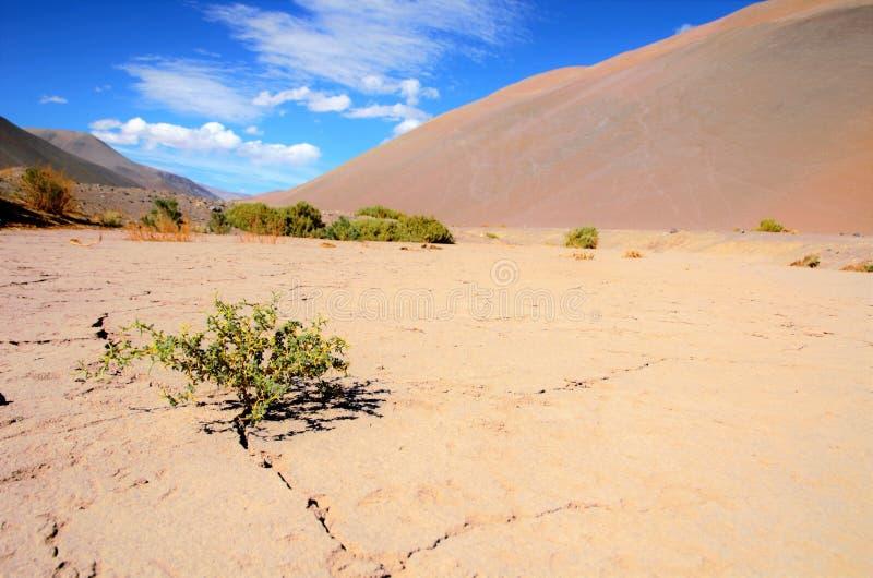 Terra muito seca entre montes imagens de stock royalty free