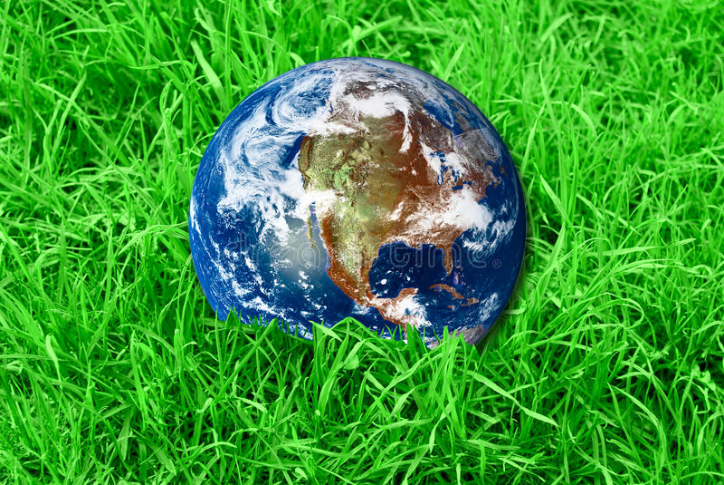 Terra na grama verde imagens de stock