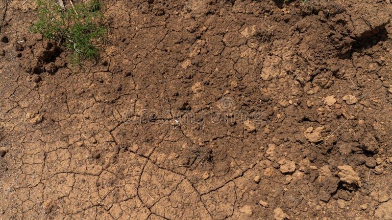 Terra nel campo incrinato dalla siccità fotografia stock