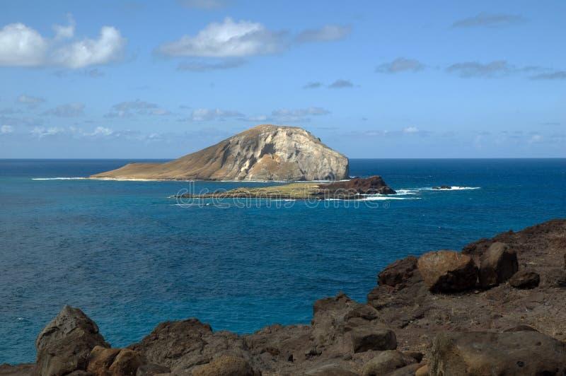 Terra nova em Havaí imagens de stock royalty free