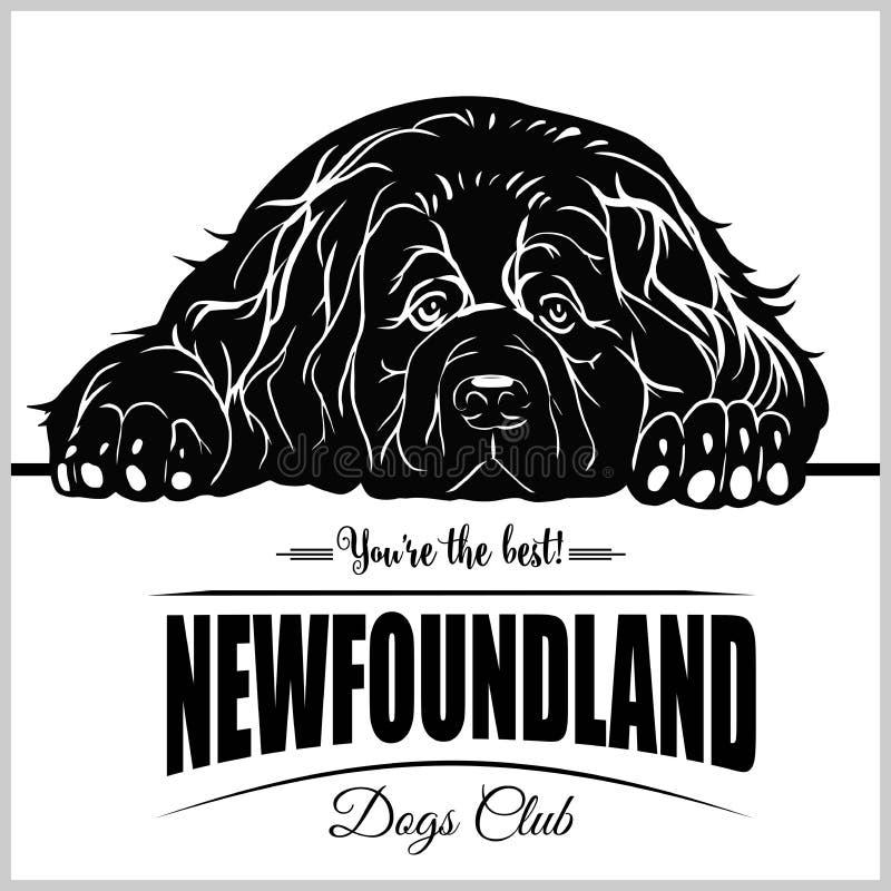Terra Nova - ilustração do vetor para crachás do t-shirt, do logotipo e do molde ilustração stock