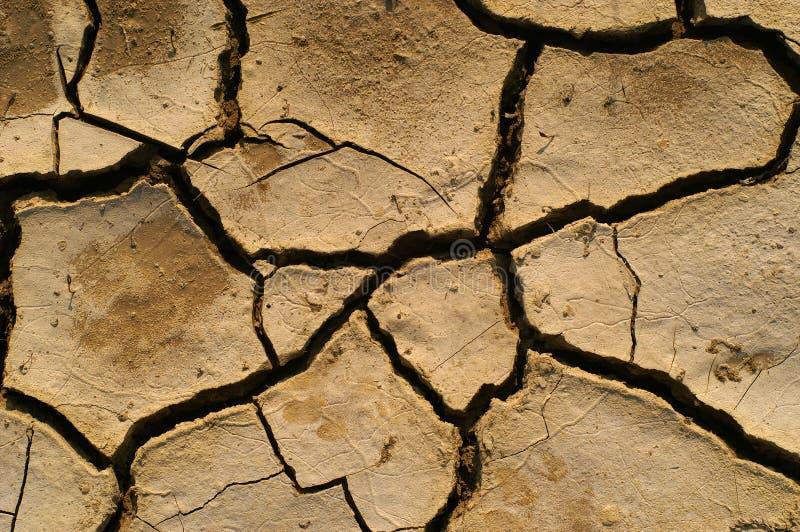 Terra secada fotos de stock royalty free