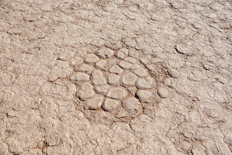 Download Terra rachada imagem de stock. Imagem de paisagem, áfrica - 107529139