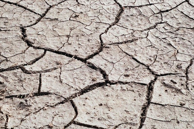 Terra seca Crackling da seca fotografia de stock royalty free