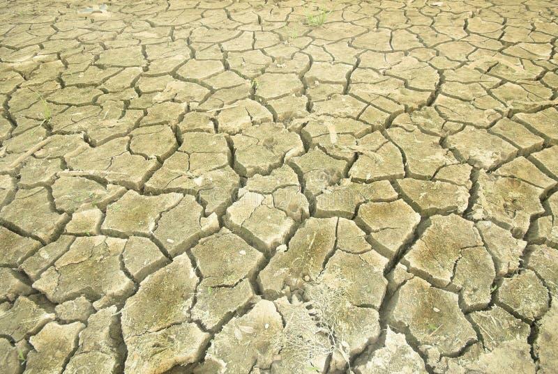 Terra seca que transforma-se um deserto fotografia de stock