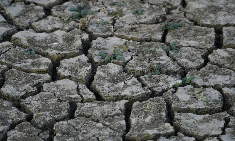 Terra seca rachada fotografia de stock