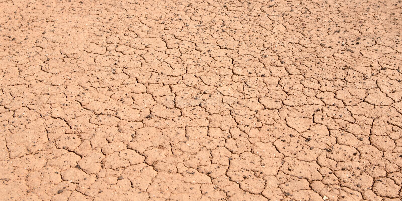 Terra seca rasgada devido à seca prolongada imagens de stock royalty free
